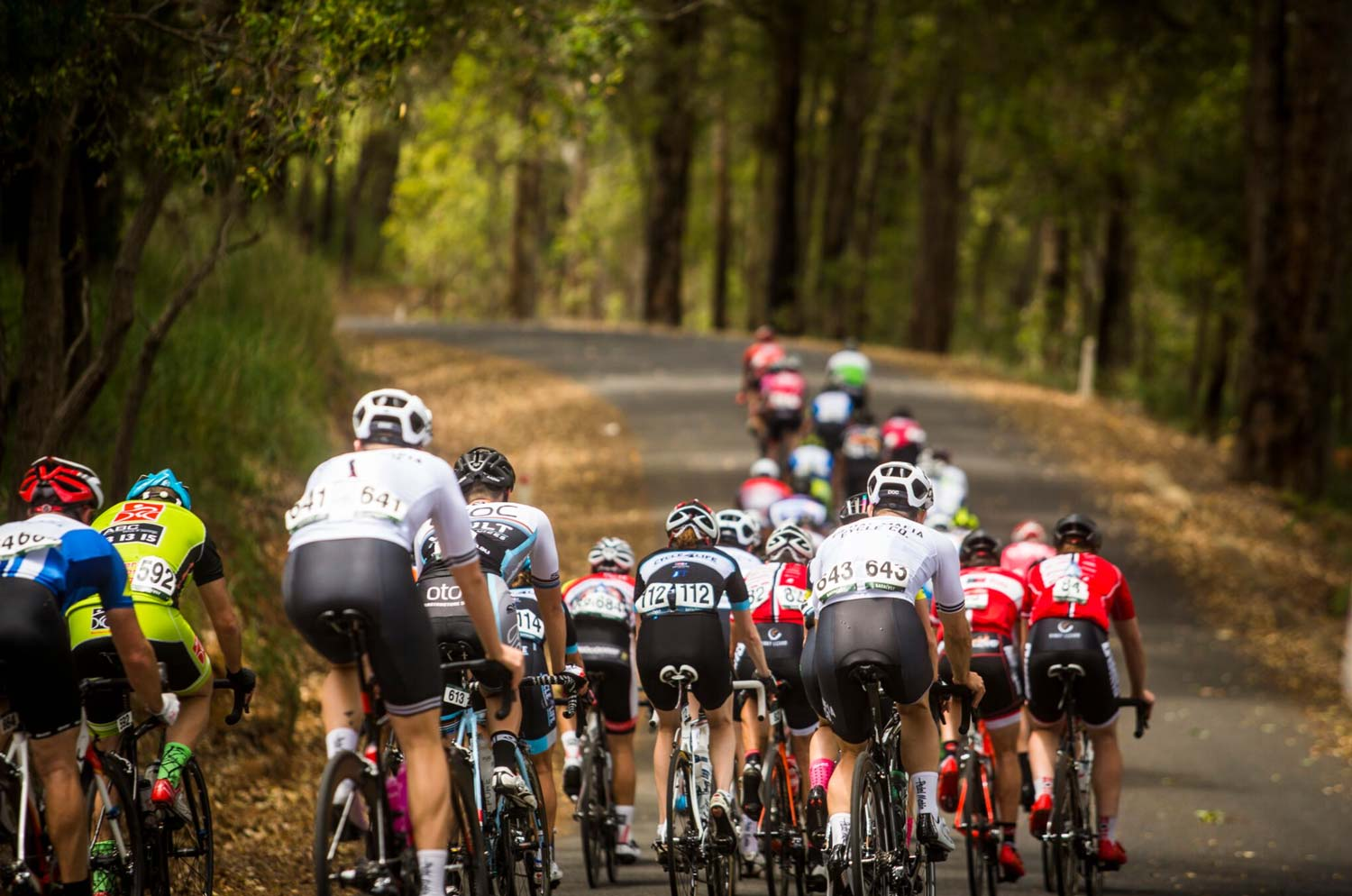 Getting bums on (bike) seats... that's one of the aims of a series of events in Western Australia in early November.